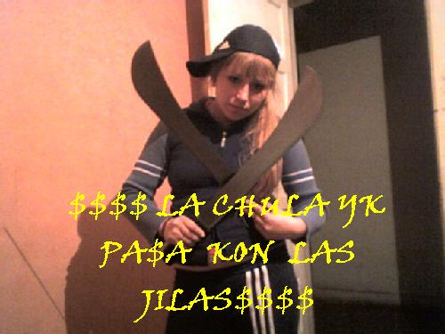 1228268761043_f